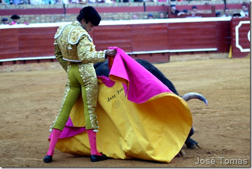 José Tomás se recrea con el astado