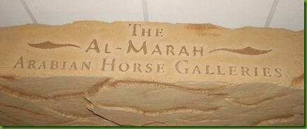 Arabia horses