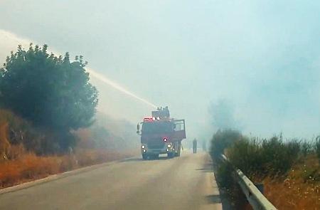 Αναδασωμένο πευκοδάσος έγινε στάχτη στον Άγιο Κωνσταντίνο – Χαλασμένος ο μοναδικός πυροσβεστικός κρουνός της περιοχής