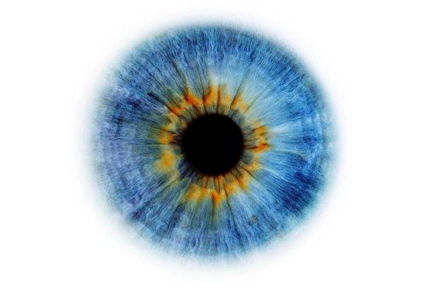 beleza dos olhos (8).jpg