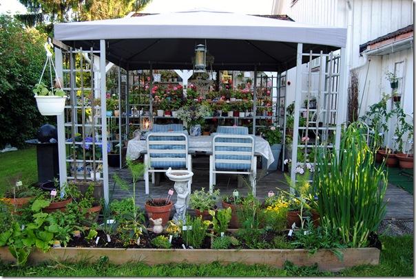 Botanisk hage og hagen i juni -12 031