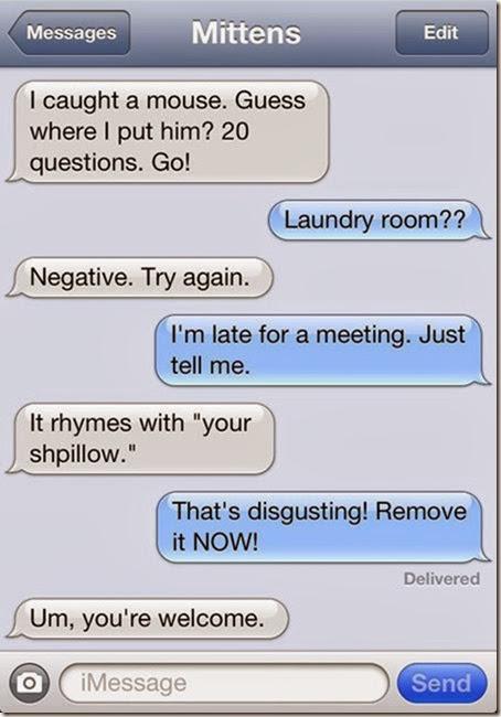 funny-texts-cat-1