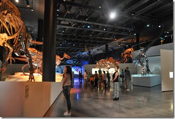 Houston Museum of Natural Science (3)