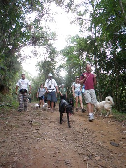 Dogs Trekking 4 (133)