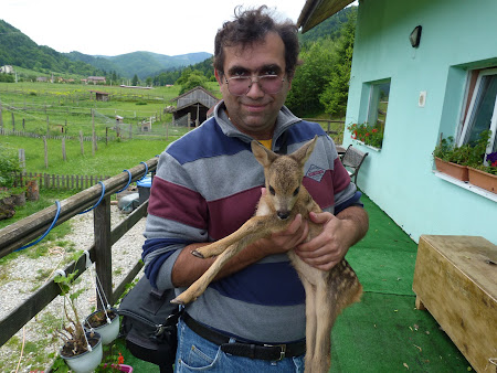 Brand turistic Romania: cu un ied de caprioara
