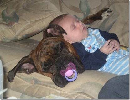 the right pacifier