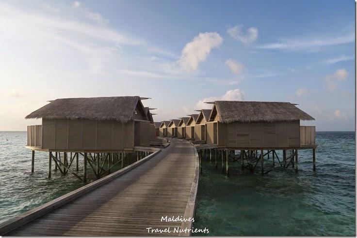 馬爾地夫 Centara渡假村 (23)