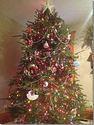 Christmas start 052