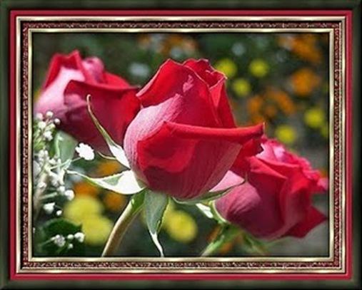 Flores-ETbM-0710