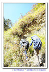 【說好的水漾森林呢】詳細的登山健行時間和行程記錄來嘍~和阿婷小妹一起來欣賞這有保存期限的美景叭^^