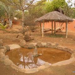Lemurs Park::IMGP4475