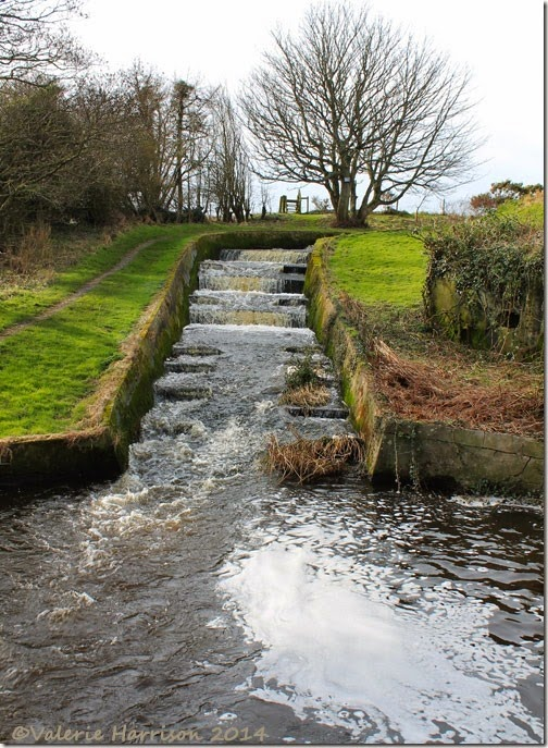 35-fish-ladder-Ardwell