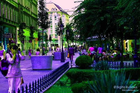 street_20110914_people