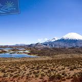 Arica - Parque Nacional Lauca  (16 de 48).jpg