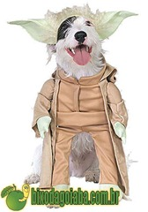 fantasia-carnaval-cachorro-mestre-yoda