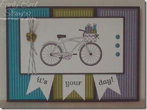 turq-wisteria-bike