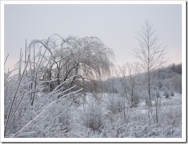 20120127_snow-ice_013