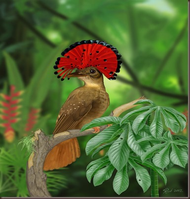 Amazing Animal Pictures Amazonian Royal Flycatcher (11)