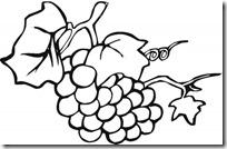 colorear uvas pintaryjugar (5)