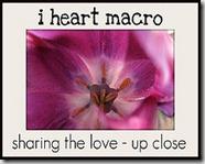 I heatyh Macro