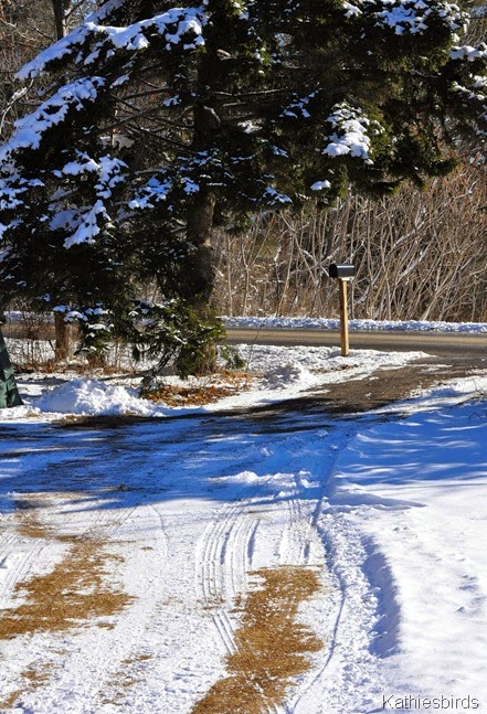 21. 1-25-2015 driveway-kab