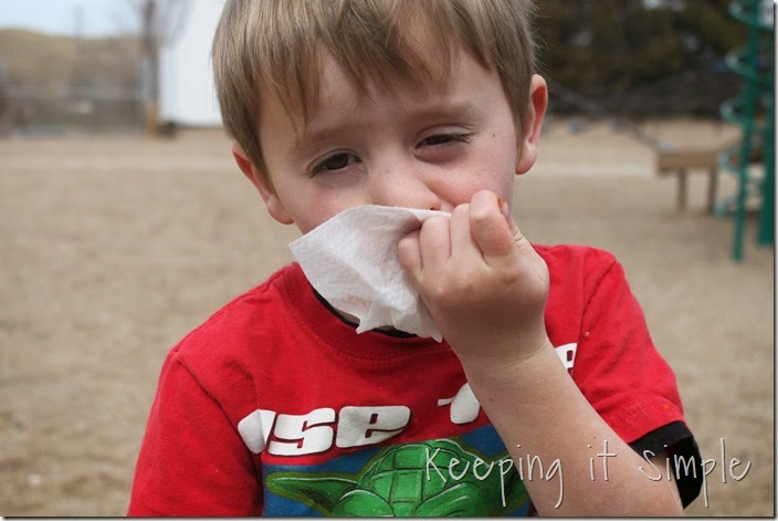 5-great-ways-to-use-wet-nap-wipes-at-a-picnic #showusyourmess (47)