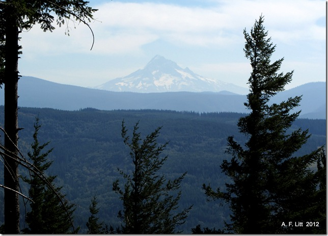 Mt. Hood from Bobs Mountain.  Skamania Co., Oregon.  September 13, 2012.  Photo of the day by A. F. Litt: September 18, 2012.