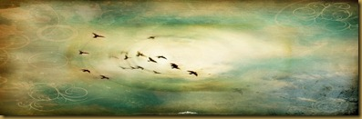 1280-freedom-fly-wallpaper