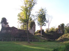 2008.10.17-014 ruines d'un château féodal à Montfort-sur-Risle