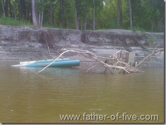 Wrecked Pontoon boat tangled in the deadfall