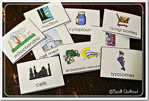 cellflashcards2