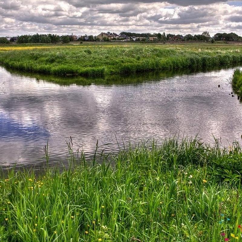 Wagrowiec Bifurcation: A Unique Hydrological Phenomenon