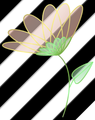 flower-sample-stripe
