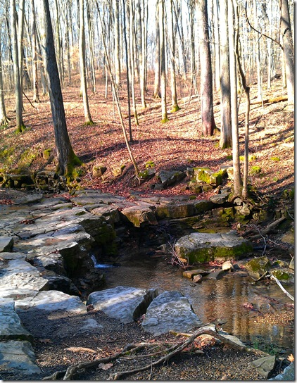McCormick's Creek State Park 2