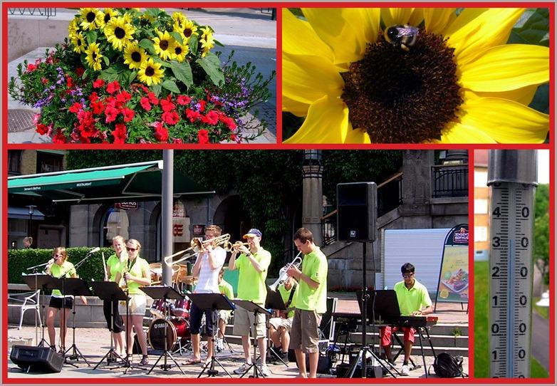 2010 07 03 Sun Music Flowers