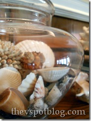 apothecary jar, shells, summer, decor