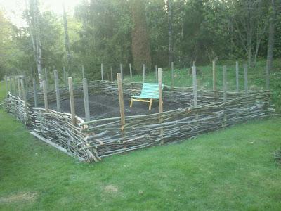 Flätat staket, fläta staket, staket av sly, köksträdgård, odla egen mat
