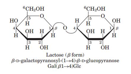 lactose structure - photo #23
