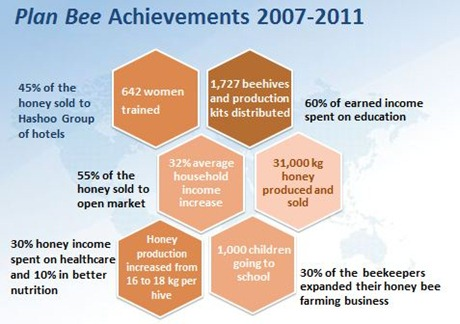 Plan Bee Achievements (1)