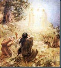 transfiguracão