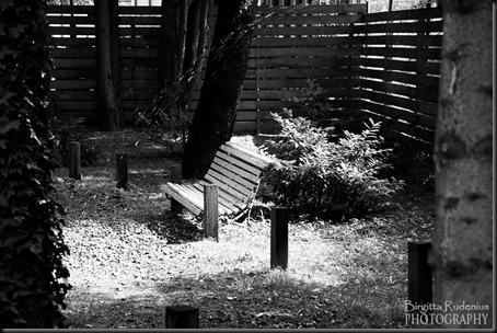 bw_20120814_bench