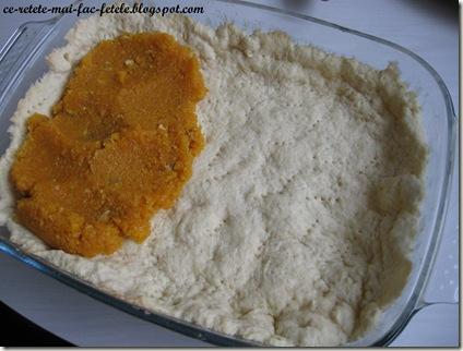 Prăjitură rustică cu dovleac - intindem compozitia