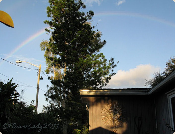 09-28-rainbow8