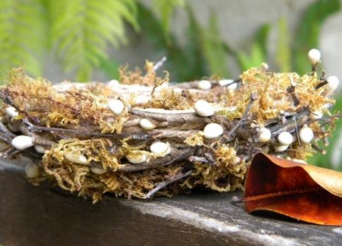 DIY craft for fall - How to make a moss nest