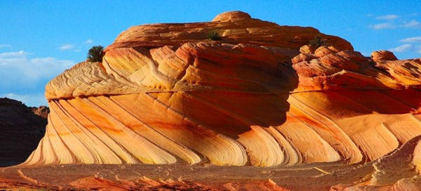 The_Wave_Coyote_Buttes_Arizona61-728x332