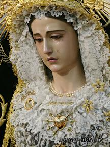 soledad-coronada-huescar-besamanos-coronacion-candelaria-2014-alvaro-abril-(4).jpg