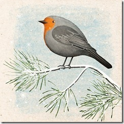 The Winter robin_thumb