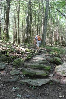 Bear Hair Gap Trail, Vogel State Park, Blairsville, Georgia