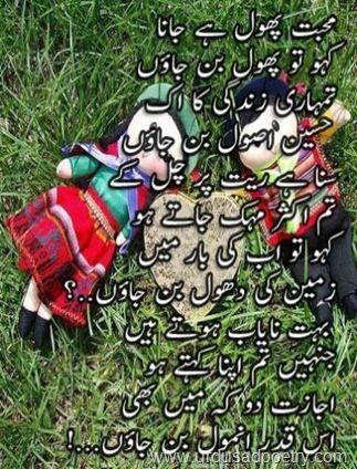 Mohabbat-Phool-Hai