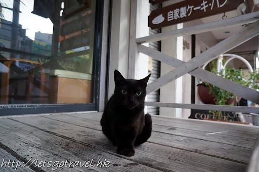 20111228okinawa011.JPG